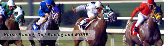 Horse Racing, Dog Racing and MORE!